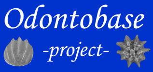 Odontobase Project