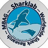 Sharklab International
